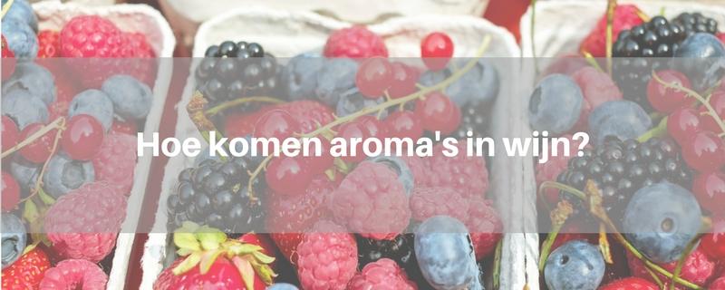 hoe-komen-aromas-in-wijn