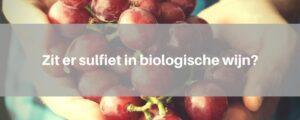 sulfiet-biologische-wijn